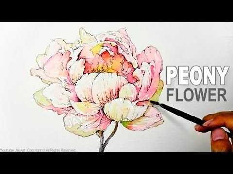 How to Draw & Paint a Peony Flower with Ink and Watercolor - Level 5 - YouTube