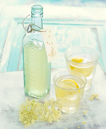elderflower cordial - not booze, but can be added to booze to justify inclusion on this board.