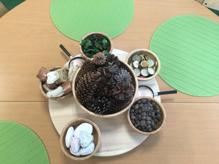 Naturmaterial, pedagogisk miljö i förskolan. Skogen, naturvetenskap