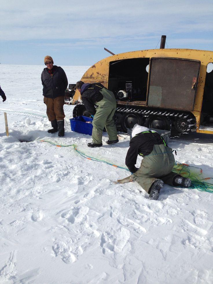 Lake Manitoba commercial fishing