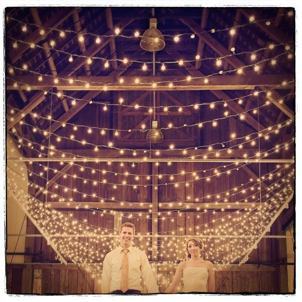barn, wedding lights