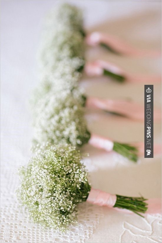 Baby's Breath is one of the top trending wedding flowers for 2014! These are a perfect example of simple, elegant and easy bridesmaid bouquets of Baby's Breath. Baby's Breath is available year-round online at GrowersBox.com.: Idea, Purple Ribbons, Wedding, Flowers Girls, Pink Ribbons, Babies Breath Bouquet, Purple Bouquets, Bridesmaid Bouquets, Baby Breath Bouquets