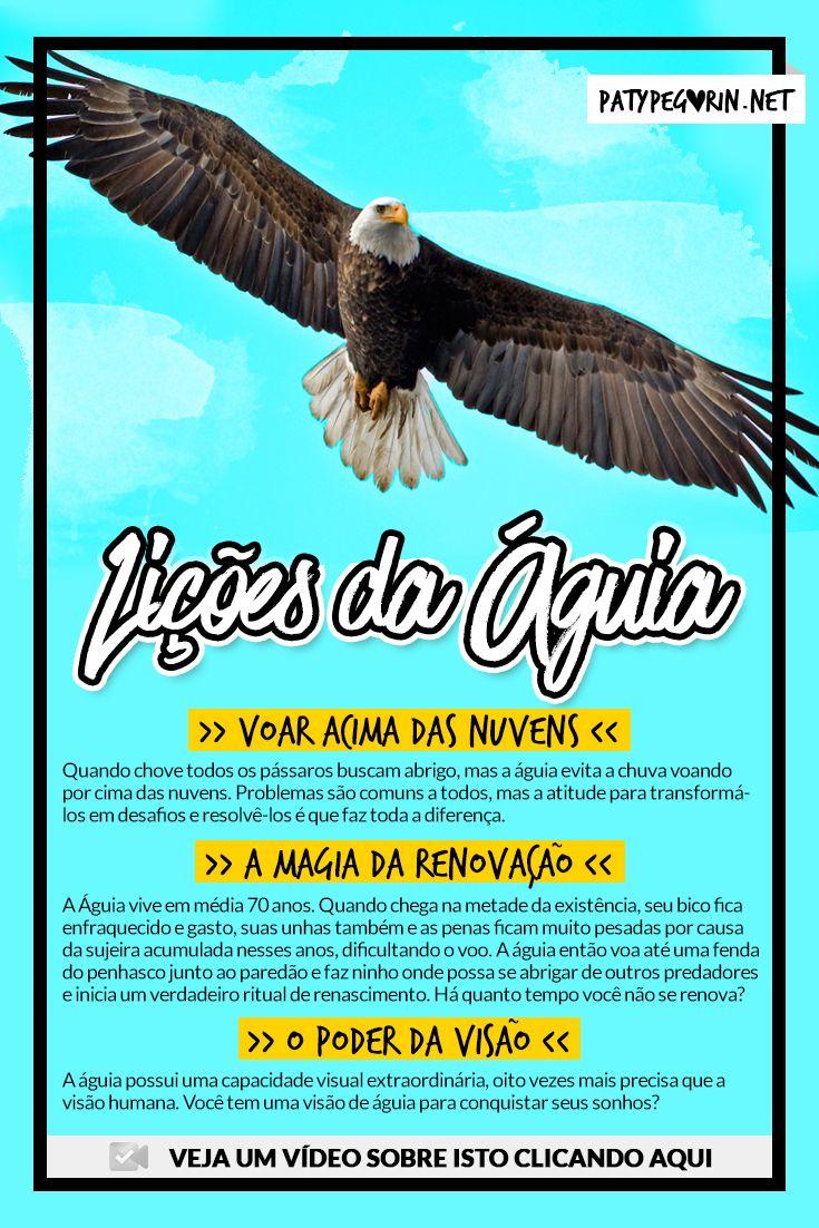 Pinterest - Lições da Águia - Reflexão sobre as águias - Motivação ♥ Saiba mais em http://patypegorin.net/aguia/