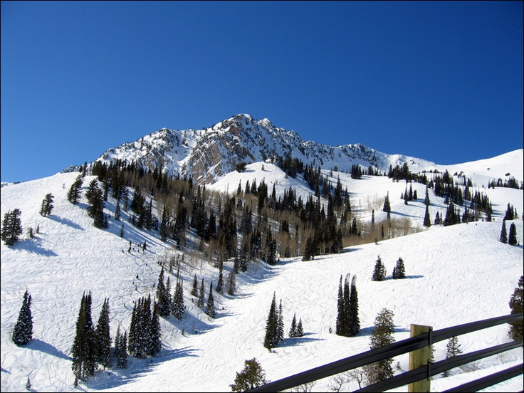 Snowbasin Ski Resort, our most popular tour, this takes you over Weber State University then down the Ogden Canyon, and down another canyon, then it opens up to the base of Snow Basin Ski Resort. after this you will circle around Pineview Reservoir and out North Ogden Canyon, down the Wasatch Mountains and over Ogden Valley.