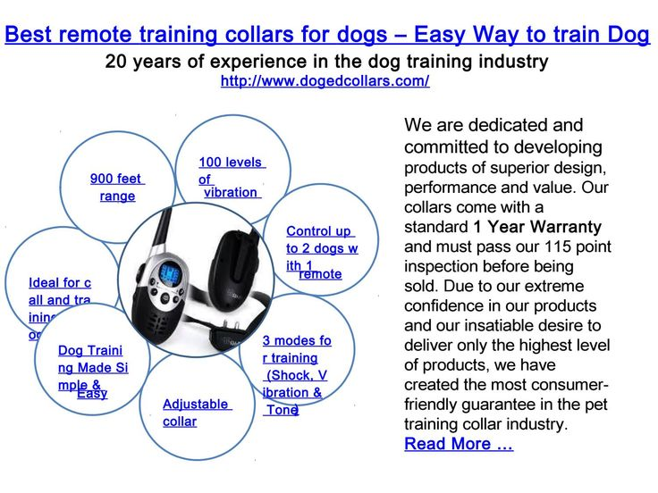 Best remote training collars for dogs – easy way to train dog  Fantastic remote preparing collars for dogs with brilliant elements can be elusive. Be that as it may, with Doged stun collars, you require not look any further.