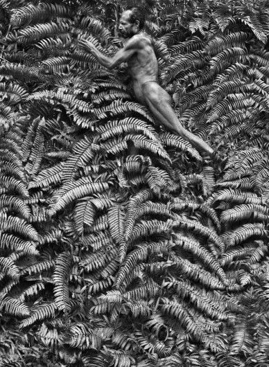 Sebastião Salgado, Yali men spend most of their time hunting in the forest where they also collect insects, fruit and vegetables, West Papua, Indonesia, 2010