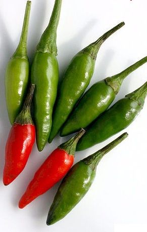 Bird's eye chilli (Cabai Rawit in Indonesian) is an ingredient to make the sambal (spicy sauce) if you like Spicy Soto!