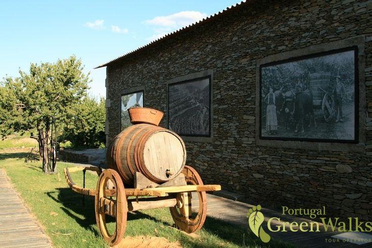 Douro wine estate
