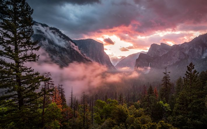 Descargar fondos de pantalla 4k, en América, en el Valle de Yosemite, por la mañana, el Parque Nacional de Yosemite, niebla, bosque, California, estados UNIDOS