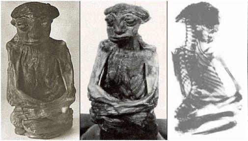 Una inusual figura momificada (encontrada) se encontró dentro de una cueva en Wyoming en 1932. Los restos eran de una especie entre un niño maduro o un ser humano de tamaño incompleto. Hasta la fecha, nadie está seguro de lo que es dicha figura, o qué le ocurrió.