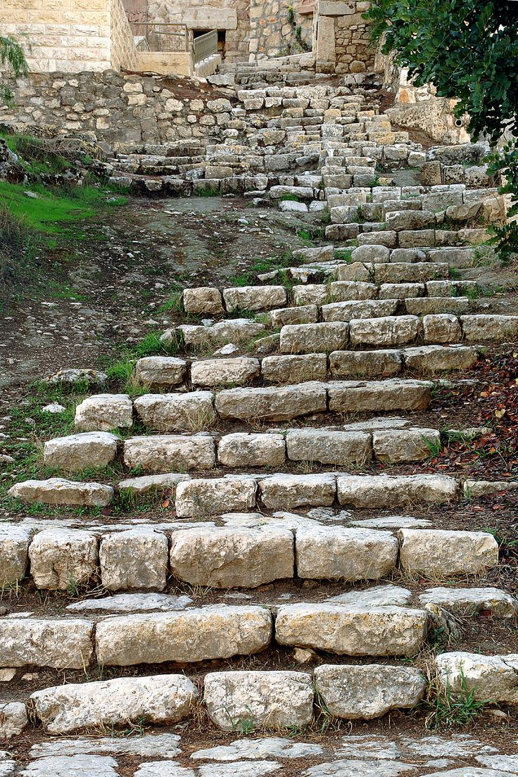 The steps down to the Garden of Gethsemane. Some of the olive trees would have been there in the time of Jesus they are so old.  I wonder if these are the same steps as Jesus would have walked?
