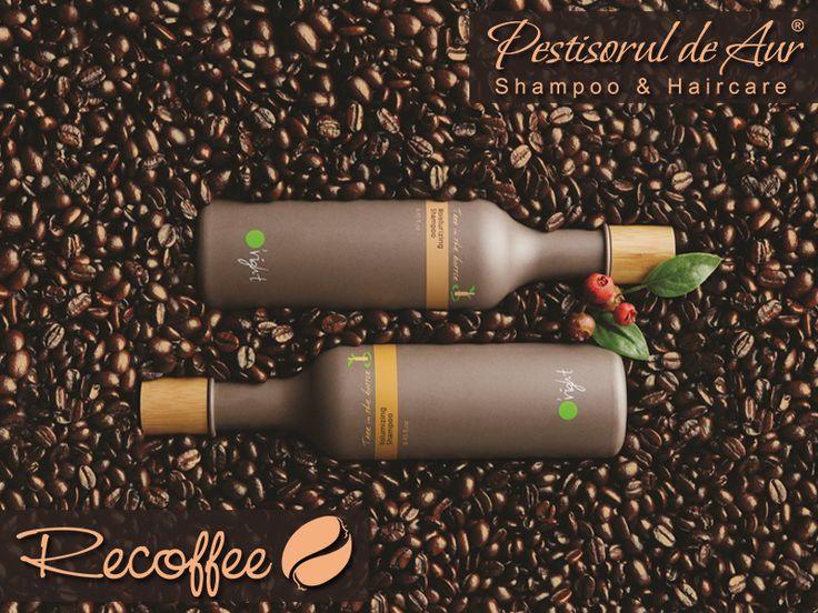 Cu toţii iubim o cafea proaspăt preparată de dimineaţă. Te-ai gândit însă că şi părul tău ar putea s-o adore? Creată din 100% zaţ de cafea reciclat, gama Recoffee îi oferă părului o puternică acţiune antioxidantă, încetineşte îmbătrânirea părului, protejează în timpul tratamentelor termice şi hidratează în profunzime. Convinge-te şi tu! https://www.pestisoruldeaur.com/Oright/Recoffee