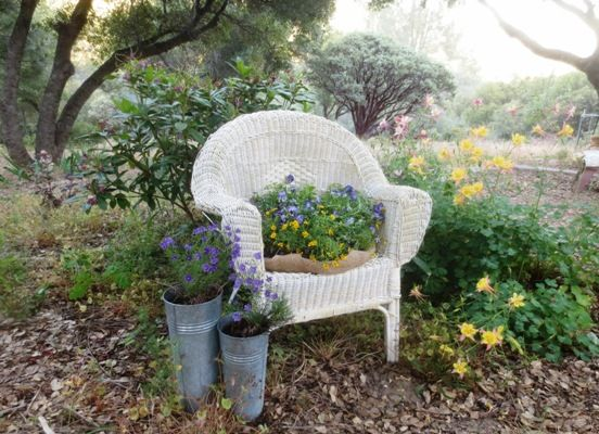 Finished chair set in the rain garden
