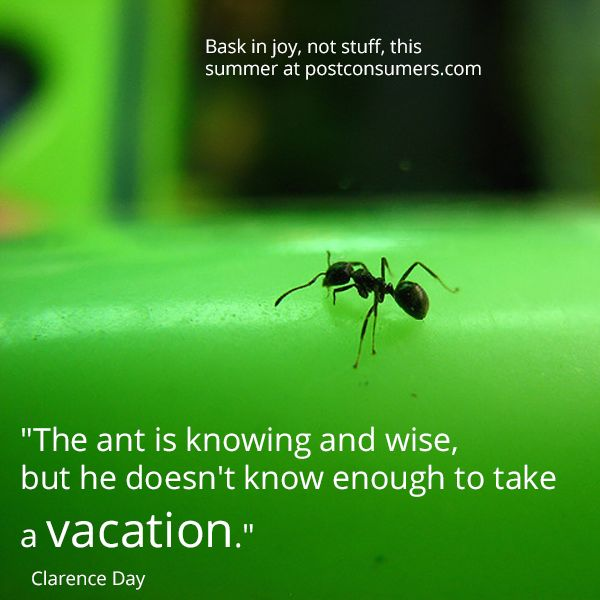 Ants and tension free life