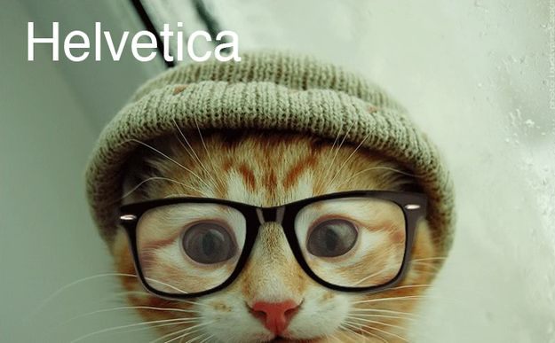 The eyeglasses and hat on the Helvetica cat kills me. I want the little bugga.