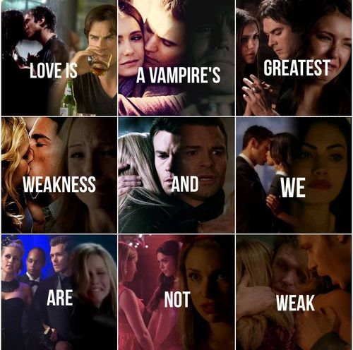 """""""Love is a vampire's greatest weakness and we are not weak""""   Delena, Stelena, Forwood, Rebekah and Elijah, Haylijah, Rebekah and Klaus, Nora and Mary-Louise"""