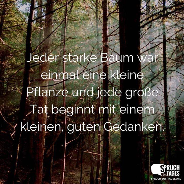 Jeder starke Baum war einmal eine kleine Pflanze und jede große Tat beginnt mit einem kleinen, guten Gedanken.