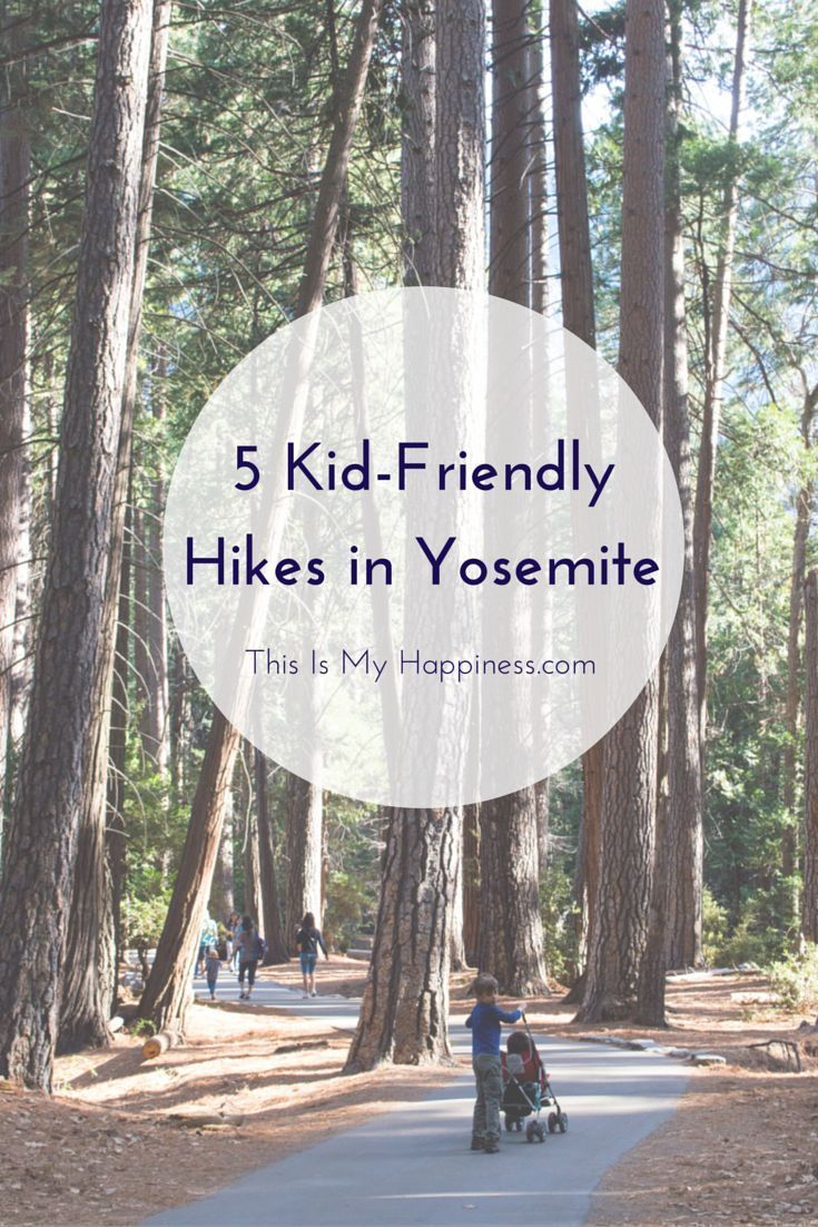 5 Easy Hikes in Yosemite National Park