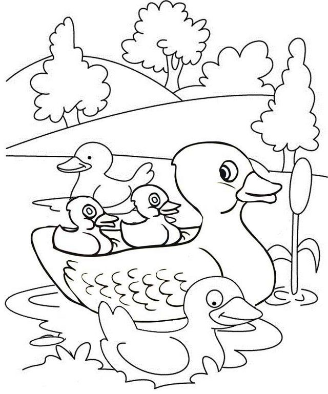 Cute Duck And Ducklings On The Lake Coloring Page Coloring Pages
