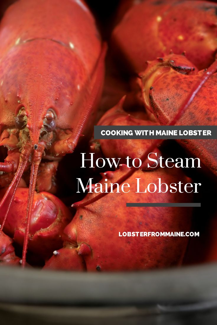 How to Steam Fresh #MaineLobster:  Choose a pot large enough to hold all the lobsters comfortably; do not crowd them. A 4- to 5-gallon pot can handle 6 to 8 pounds of lobster. Put 2 inches of seawater or salted water in the bottom of a large kettle.