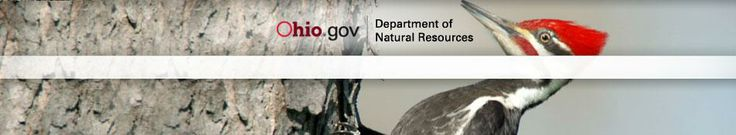 Buy Ohio Fishing & Hunting Permits Online