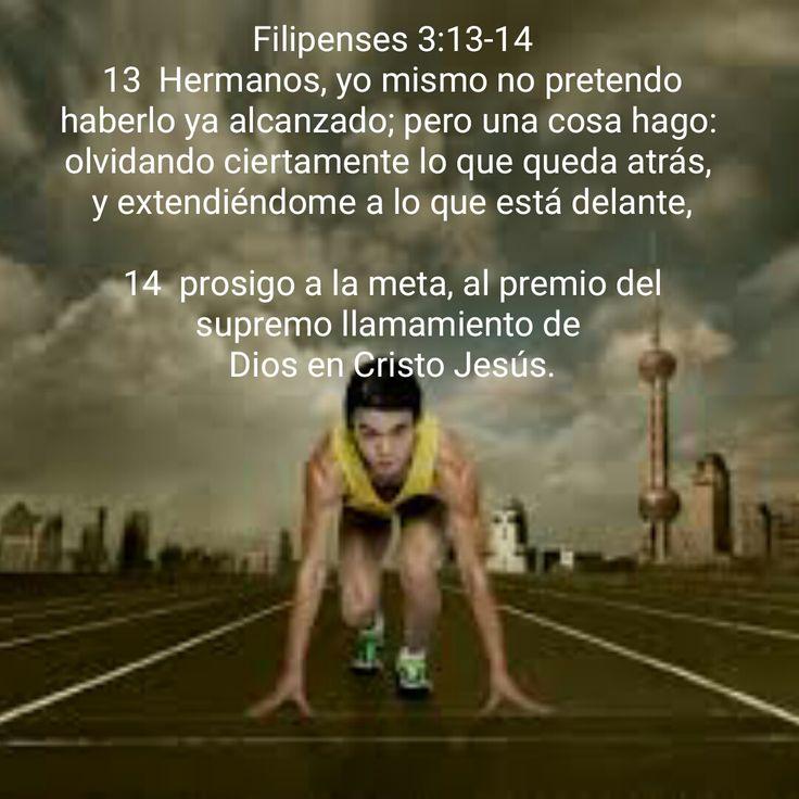 Filipenses 3:13-14 13 Hermanos, yo mismo no pretendo haberlo ya alcanzado; pero una cosa hago: olvidando ciertamente lo que queda atrás, y extendiéndome a lo que está delante, 14 prosigo a la meta, al premio del supremo llamamiento de Dios en Cristo Jesús.
