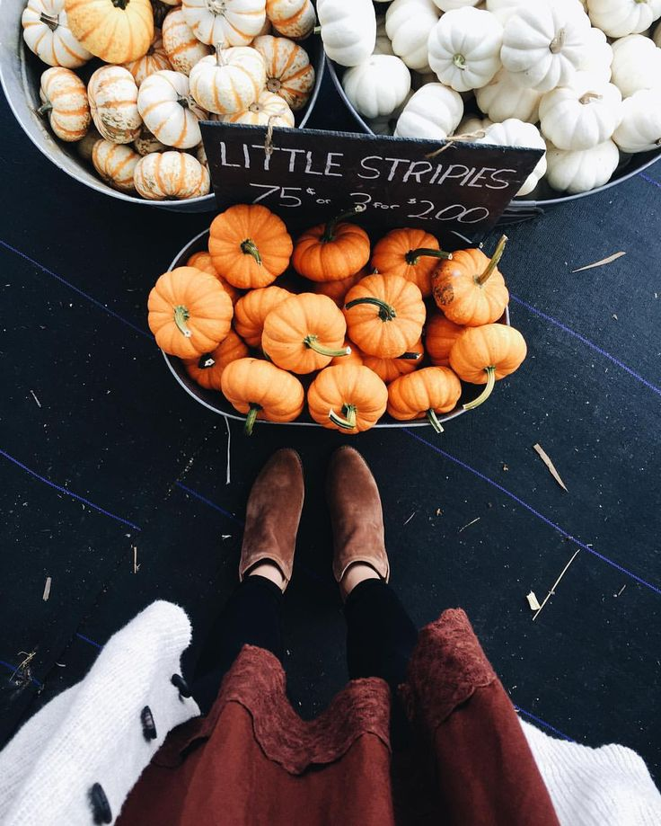 308 отметок «Нравится», 7 комментариев — Lauren Gray (@simplylaurengray) в Instagram: «Laughing because it's 90 degrees out and I'm dressed like fall at a pumpkin patch …»