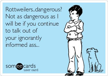 Rottweilers..dangerous? Not as dangerous as I will be if you continue to talk out of your ignorantly informed ass...