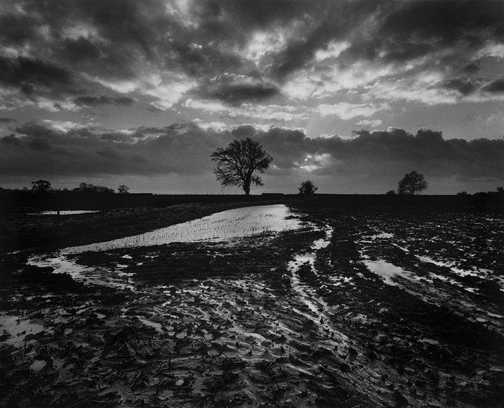 The piece done by Don McCullin is almost rural and with black and white element it becomes a intense piece