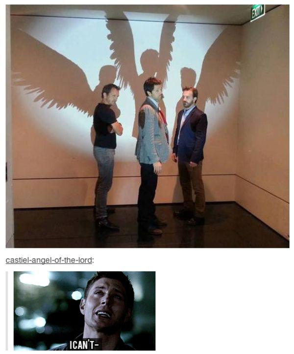 [Image - 621320] | Supernatural | Know Your Meme