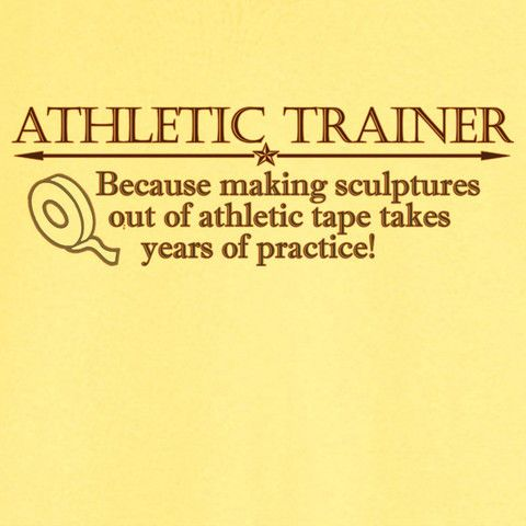 Athletic Trainer and Expert Tape Sculptor Funny Novelty T-Shirt - Rogue Attire