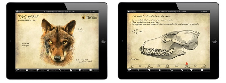 The #Wolf #App that helps unfold the secrets of #animal life with the utmost #scientific rigour