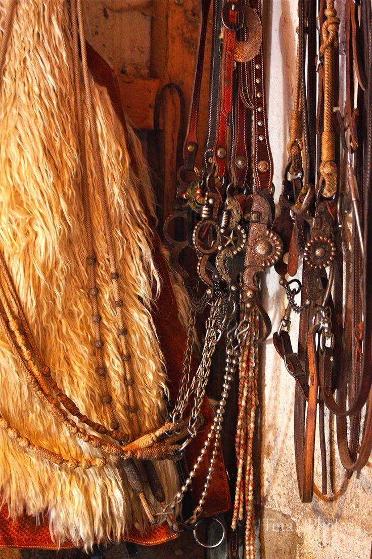 """Cowboy gear  Cowboy Gear   Tina V Photos  """"Neat collection!"""""""