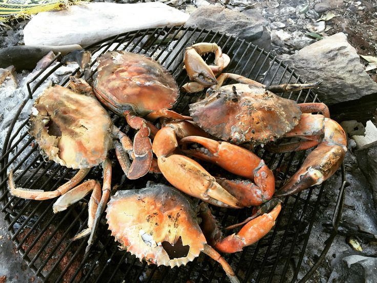 Broome Western Australia- Fresh Mud Crab cooked on the coals.