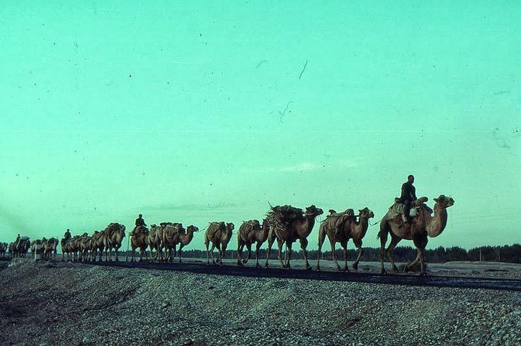 In viaggio tra Europa e Asia ripercorrendo l'itinerario di marco Polo: la mitica Via della Seta  http://www.travelstories.it/2013/10/in-viaggio-tra-europa-e-asia-lungo-la.html  #silkroad #viadellaseta #marcopolo #asia #travelblog #travelstories