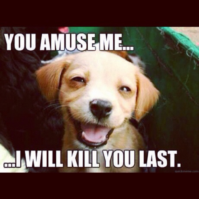 You Amuse Me Therefore I Ll Kill You Last Lol Funny