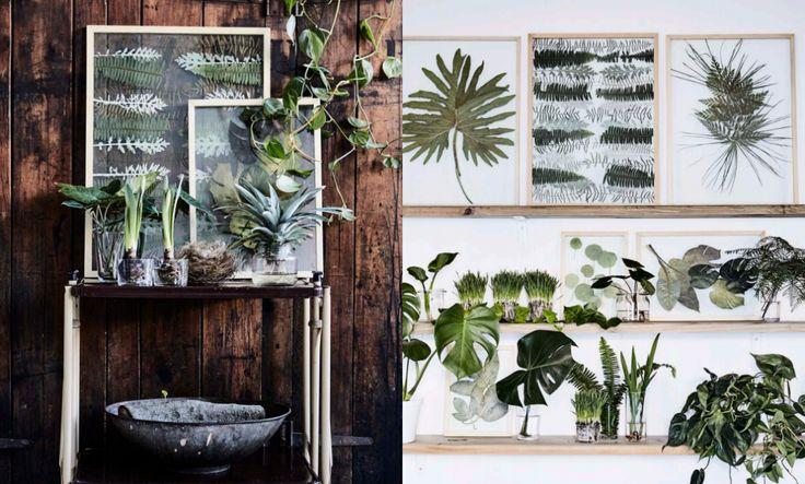 Design inspiráció: préselt levelek, avagy a minimalista lakberendezés legújabb kedvencei