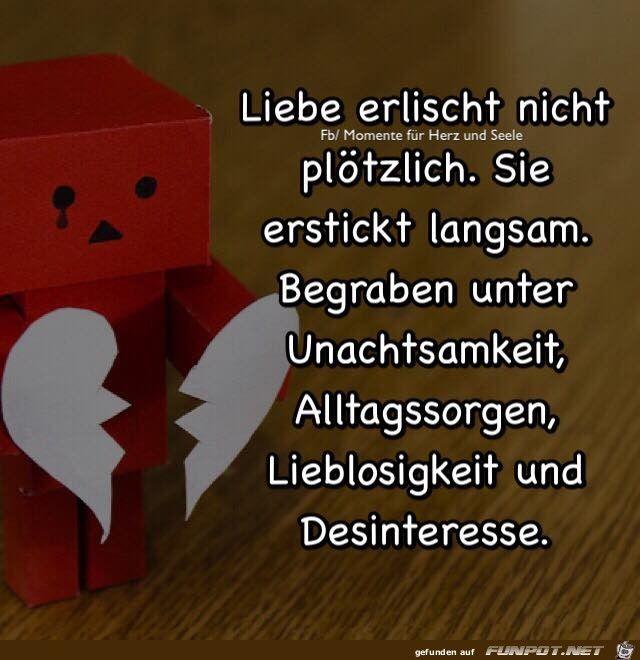 ein Bild für's Herz 'Liebe erlischt nicht.jpg'- Eine von 15541 Dateien in der Kategorie 'Sprüche' auf FUNPOT.
