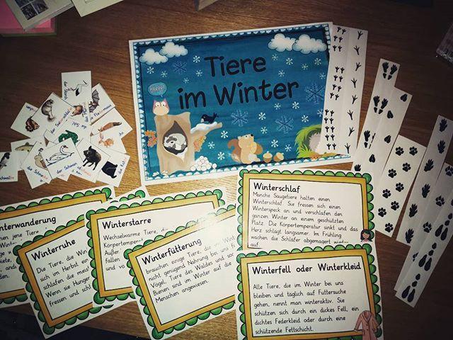 Material Basteln Zum Thema Tiere Im Winter Das Plakat Ist Von Ideenreiseblog Und Die Texte Von Wegerer Susanne S Winter Animals Winter Animals