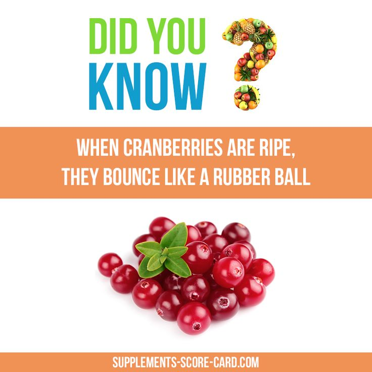When cranberries are ripe, they bounce like a rubber ball.