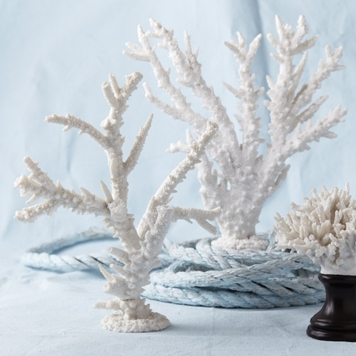 White resin coral branch sculpture shop decor coastal