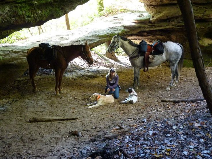 This is Honey Creek Horse Camp located in Big South Fork ...