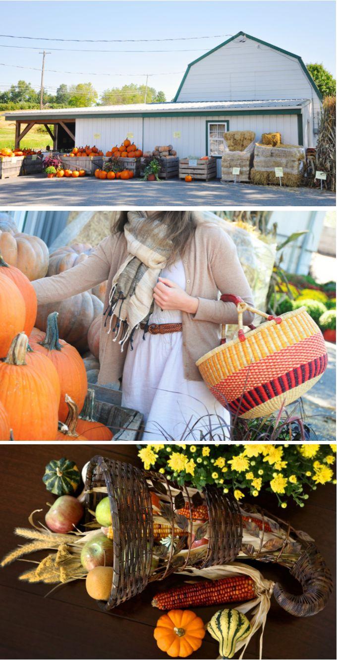 111 best fair trade fall living images on pinterest fair for Thanksgiving home decorations pinterest