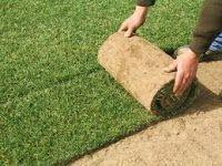 Creare Giardini: Tecnica per la posa del tappeto erboso in zolle