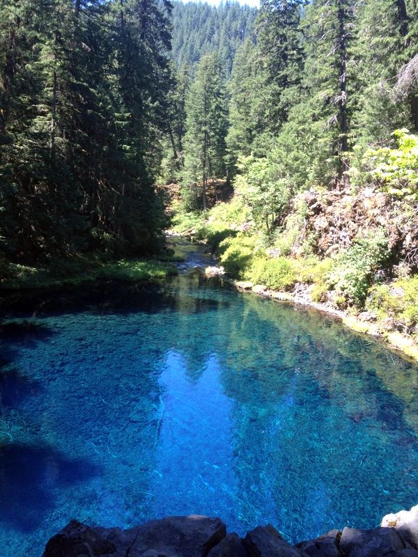 Hiking Blue Pool - Oregon I've been there! It really does look that blue.