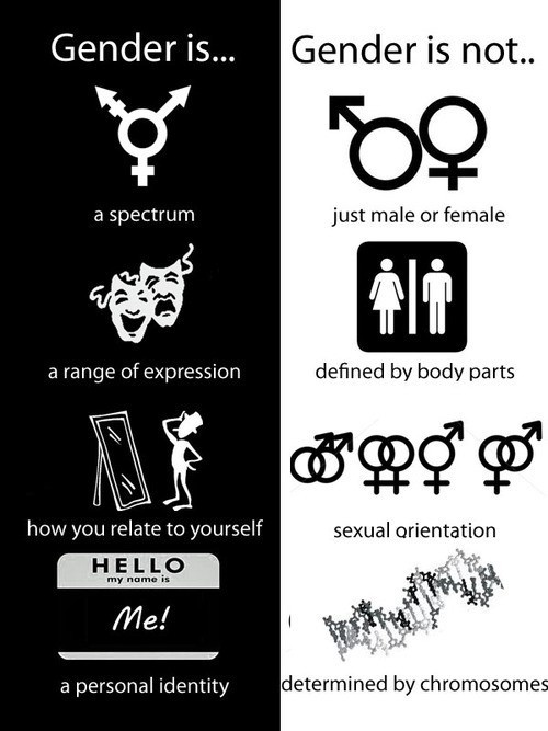 "Clarifying what gender is and what it is not--every single item on the left is false or misleading, while the ones on the right are true if you delete all the ""nots""."
