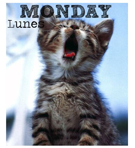 Monday #LAZY