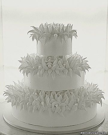 "martha stewart winter wedding cakes - This is the cake that I actually wanted for my ""Winter Wonderland"" January wedding, but I was afraid to ask how much it would cost because I was not paying for my cake. I thought this cake would fit my winter wonderland theme perfectly!"