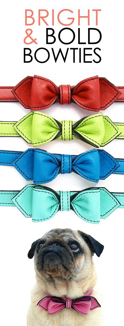 Best Dressed - The Martini Bowtie Collar! Handmade in California, these designer bow tie dog collars are constructed with colorful supple leather and matte black detailing. Make every day a special occasion!