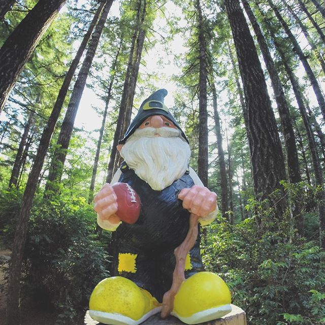 Ryan Smith (@ghost_rogue) is a 33-year-old disabled veteran full-time dad of four (soon to be five) soccer coach and photographer from Eugene Oregon who digs hiking adventure and good brews. This weekend as American college football season kicks off he is rooting for the Ducks. Thats my gnome. My kids named him Autzen the Gnome after the universitys stadium. He goes on all of our camping trips with us. This week we were near Cape Blanco State Park the most western point in Oregon which…